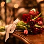 DBR_9540